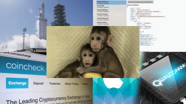 Клонировали приматов... Tоп 5 новостей высоких технологий за неделю [22.01-28.01]